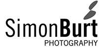 simon_logo_website